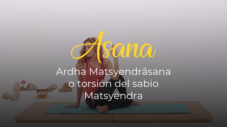 Ardha Matsyendrâsana o torsión del sabio Matsyendra
