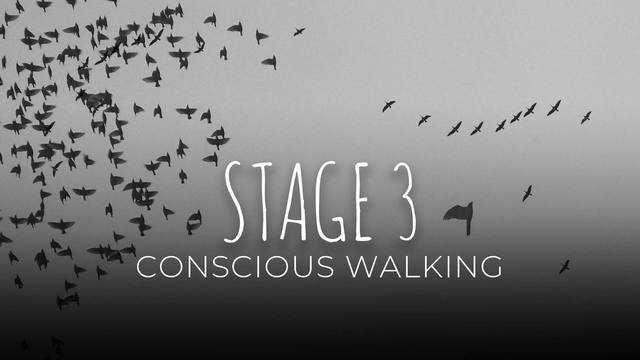 18 Conscious walking