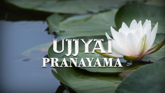 Pranayama Practice 3: Ujjayi