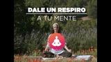 Dale un respiro a tu mente: practica meditación