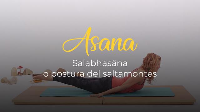 Salabhasâna o postura del saltamontes