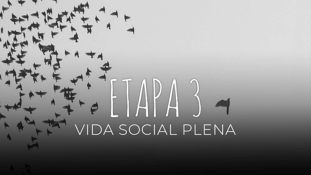 19 Vida social plena
