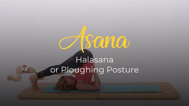 Halâsana or plow pose