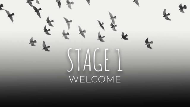 Welcome Stage 1: Awakening
