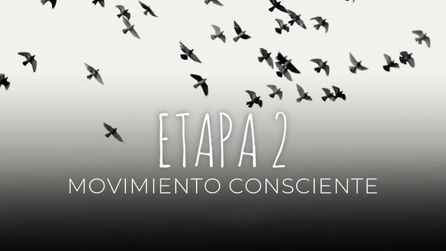 15 Movimiento consciente
